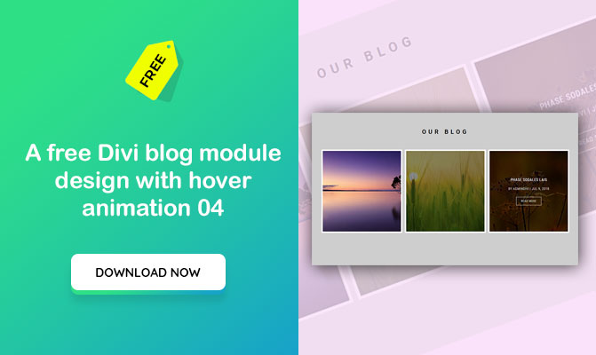 A free Divi blog module design with hover animation 04