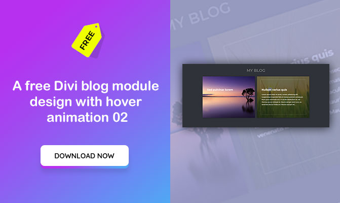 A free Divi blog module design with hover animation 02