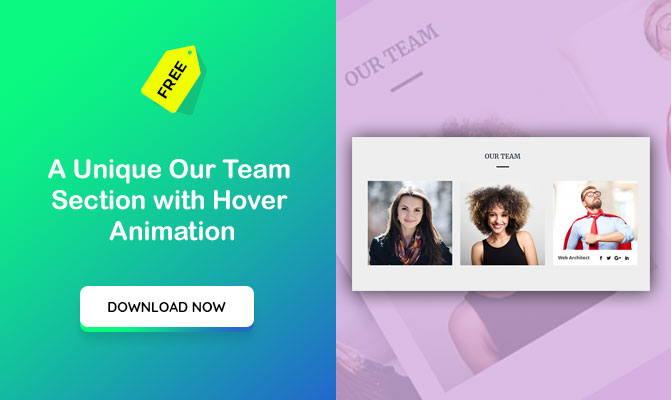 A Unique Our Team Section with Hover Animation