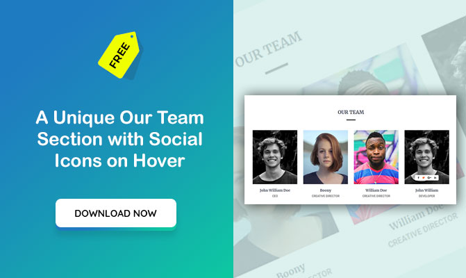 A Unique Our Team Section with Social Icons on Hover