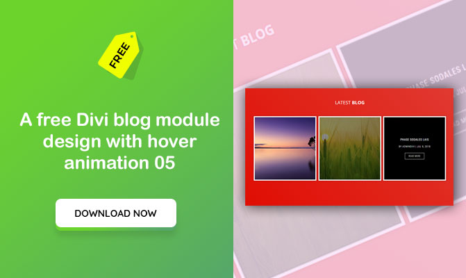 A free Divi blog module design with hover animation 05