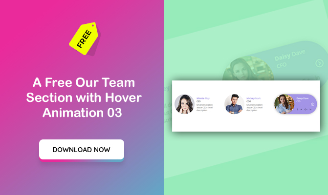 Our Team Section with Hover Animation 03