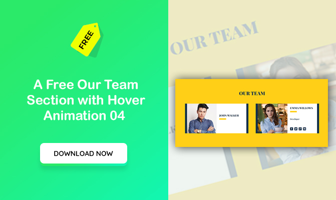 Our Team Section with Hover Animation 04