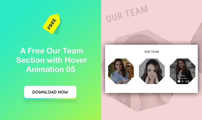 A Free Our Team Section with Hover Animation 5