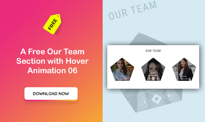 Our Team Section with Hover Animation 06