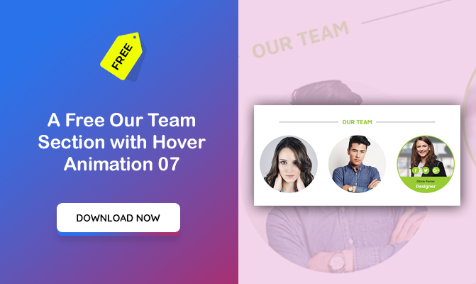 Our Team Section with Hover Animation 07