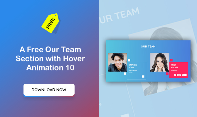 Our Team Section with Hover Animation 10