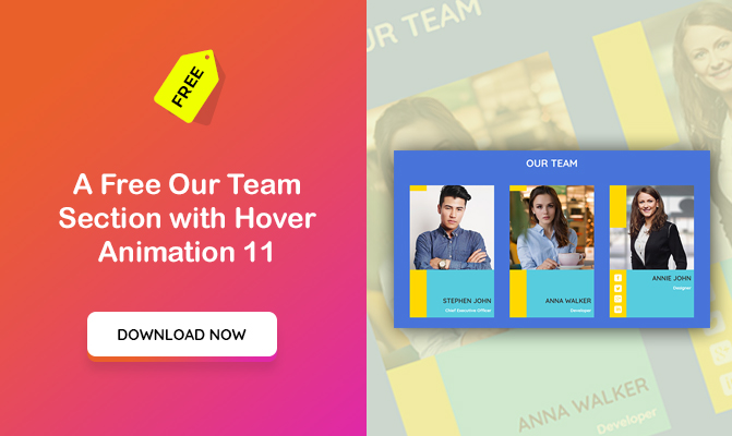 Our Team Section with Hover Animation 11