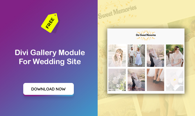 Divi Gallery Module For Wedding Site