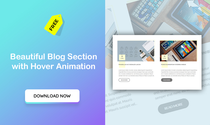 Beautiful Blog Section with Hover Animation
