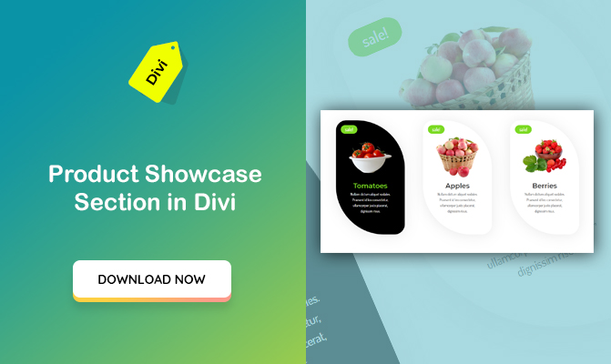 """Products showcase"" Section Design in Divi"
